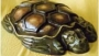 Пластиковые формы «Черепаха»