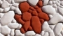 Пластиковые формы «Черепаший голыш»